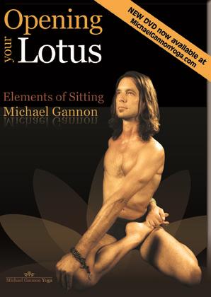 Lotus DVD