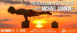 holbox-web-banner-nuevo