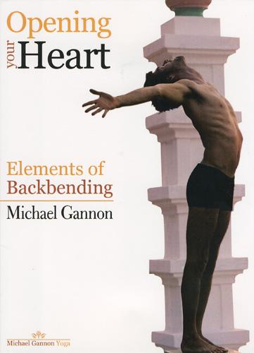 Heart DVD Scan